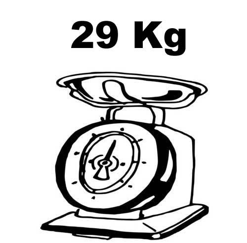 peso bici elettrica revoe 29 kg