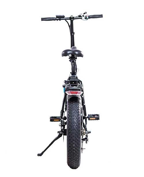 bici elettrica con pedalata assistita con pneumatici fat