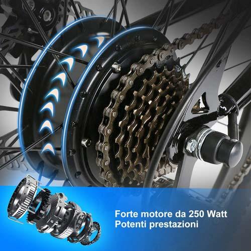 potente motore da 250w per la mtb elettrica speedrid