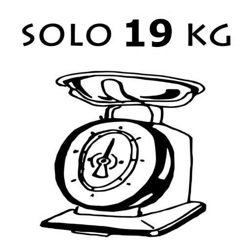 ebike fiido d2 s pesa solo 19 kg