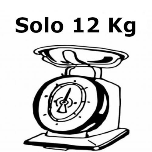 bici elettrica leggera solo 12 kg