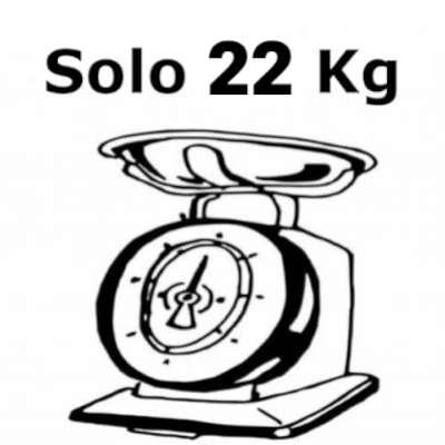 mtb elettrica leggera solo 22 kg