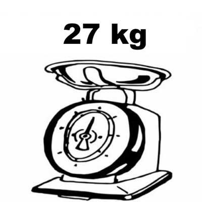 mtb elettrica macwheel wrangler 600 peso