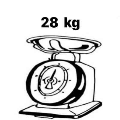 bici elettrica da città leggera 28 kg