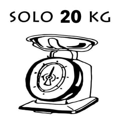bici elettrica leggera solo 20 kg di peso