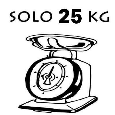 bici elettrica leggera solo 25 kg