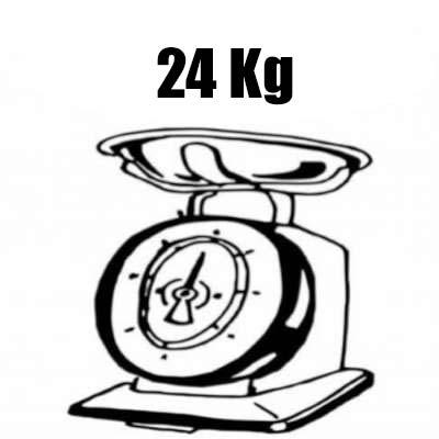 bici elettrica leggera solo 24 kg argento omega