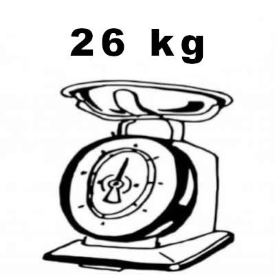bici elettrica peso 26 kg