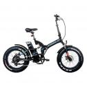 Bici elettrica Argento Bi Max